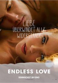 """Filmplakat für """"ENDLESS LOVE"""""""