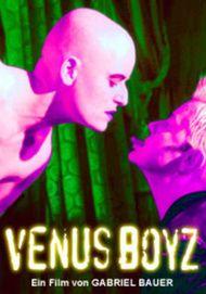 "Filmplakat für ""Venus Boyz"""