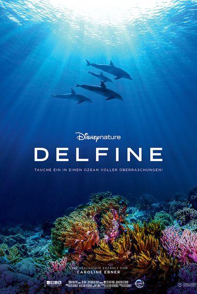 """Filmplakat für """"Delfine"""""""