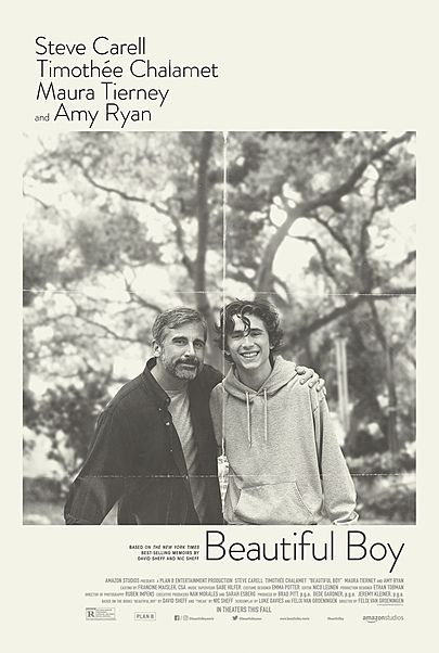 """Movie poster for """"BEAUTIFUL BOY"""""""