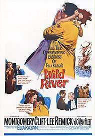"Movie poster for ""WILD RIVER"""