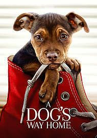 """Movie poster for """"A DOG'S WAY HOME"""""""