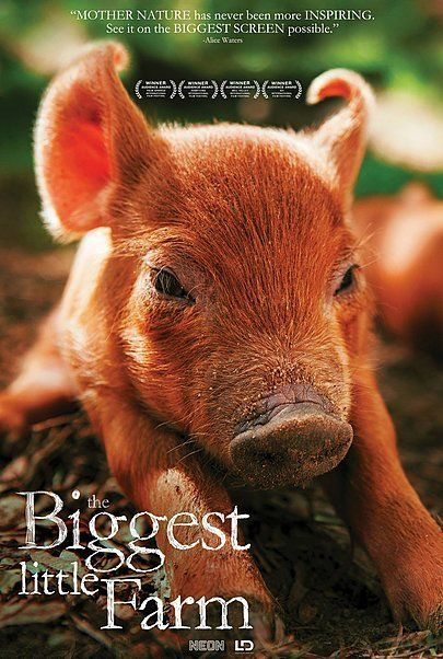 """Movie poster for """"THE BIGGEST LITTLE FARM"""""""