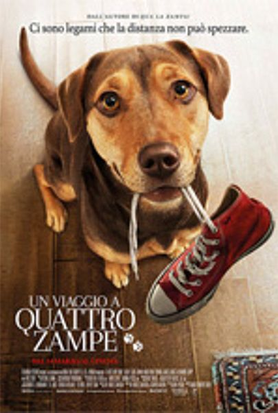 "Movie poster for ""A DOG'S WAY HOME"""