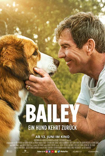 """Filmplakat für """"Bailey - Ein Hund kehrt zurück"""""""