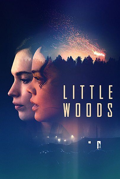 "Movie poster for ""LITTLE WOODS"""