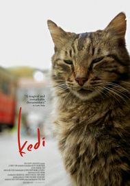 "Movie poster for ""KEDI"""