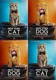 "Movie poster for ""NY CAT FILM FESTIVAL / NY DOG FILM FESTIVAL"""