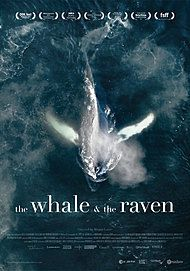 "Movie poster for ""THE WHALE AND THE RAVEN"""