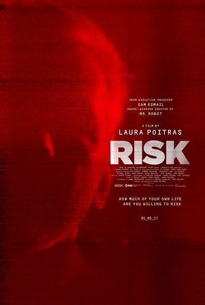"Movie poster for ""RISK"""