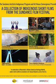 "Movie poster for ""INDIGENOUS PROGRAM – SUNDANCE INSTITUTE"""