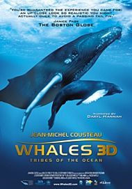 "Movie poster for ""WHALES 3D"""
