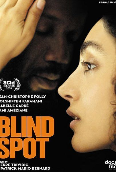 "Movie poster for ""BLIND SPOT"""