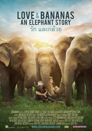 "Movie poster for ""LOVE & BANANAS: AN ELEPHANT STORY"""